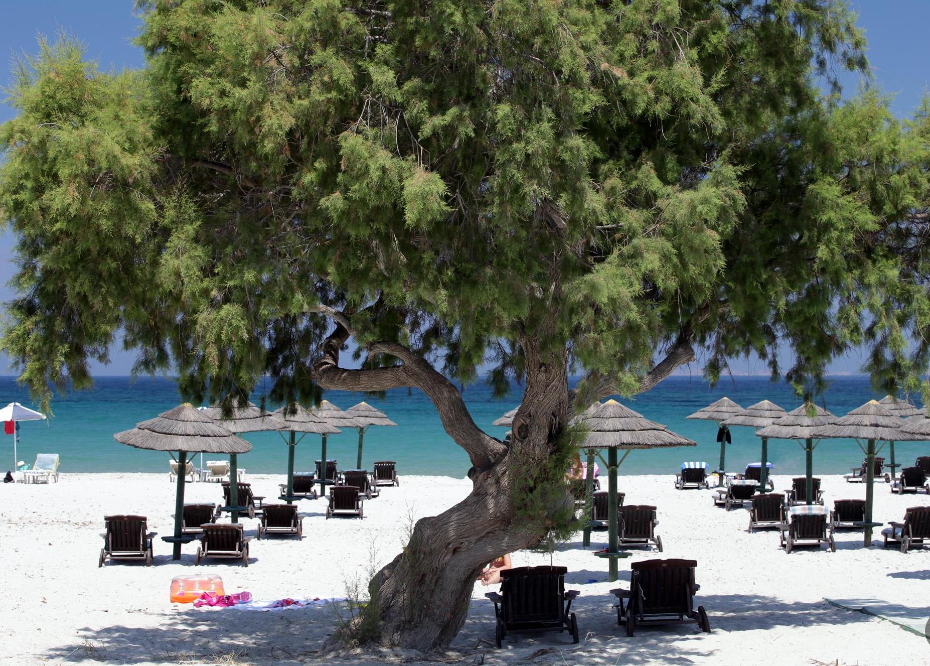 Пляж Мастихари, остров Кос