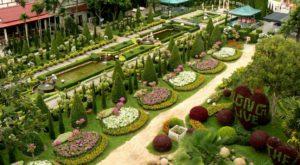 Паттайя. Ботанический Сад Нонг Нуч вид сверху