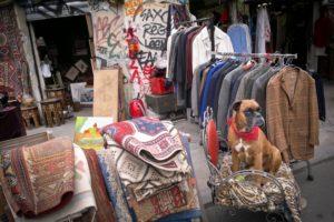 Ценителям раритетных, старинных предметов настоятельно рекомендуется заглянуть на один из стихийных, блошиных рынков