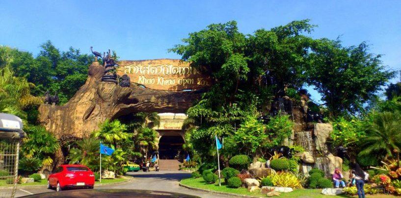 Зоопарк Кхао Кхео (Khao Kheow Open Zoo)