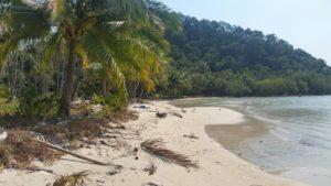 Природный мусор, вынесенный на берег морем, никто не убирает, поэтому пляж может показаться неухоженным.