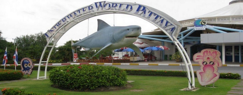 Океанариум в Паттайе Подводный мир (Underwater World)