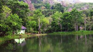 """Национальный парк Кхао Пхра Тхео предоставляет всем желающим попасть в настоящую """"Книгу Джунглей"""""""
