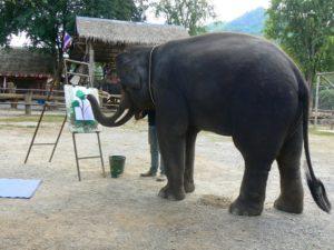 Во время шоу слоны показывают все свои умения – переносят и укладывают бревна, играют в футбол и в баскетбол и даже рисуют.