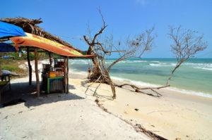 В южных областях страны (о. Фукуок, курорт Вунгтау) сухой сезон, длящийся с декабря по апрель, наиболее комфортен для отдыха европейцев.