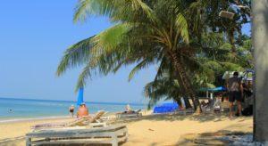 К услугам гостей собственный пляж, открытый бассейн, барбекю и детская площадка.