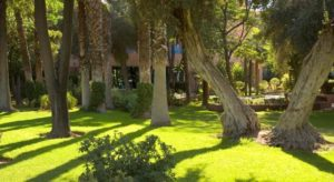 Отель может похвастаться одним из самых красивых садов в городе расположенным на территории 3 га