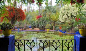 Озеро с водяными лилиями в саду Мажорель