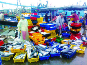 К порту Duong Dong подходят рыболовецкие суда со свежевыловленными морепродуктами.