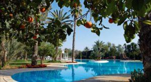 Отель The Es Saadi Palace 5* расположен на территории роскошного тропического парка с фруктовыми деревьями
