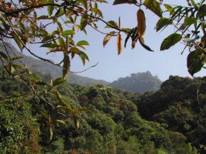 Национальный парк объявлен в 2010 году ЮНЕСКО биосферным заповедником.