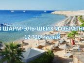 Авиабилеты в Шарм-эль-Шейх и обратно за 12 720 рублей