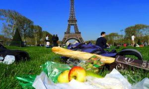 Пикник на траве