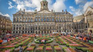 Тюльпаны перед королевским дворцом в Амстердаме