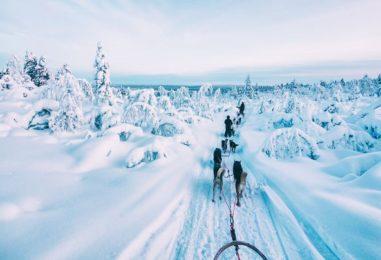 Зимний отдых в Финляндии